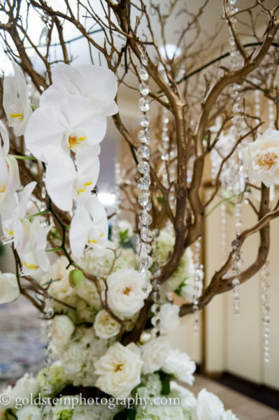 Omni William Penn hotel, white wedding, crystal tree, goldstein photography